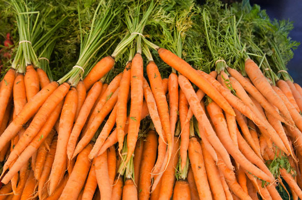 Bunches of carrots --- Image by © Cat Gwynn/Corbis
