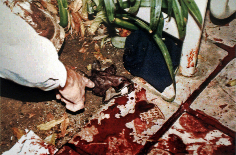 OJ Simpson Crime Scene Photos Mind 7