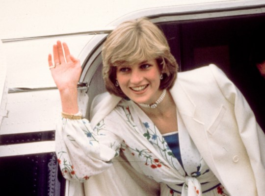 Princess Diana: Royal Bodyguard Spills Her Sex Secrets thumbnail