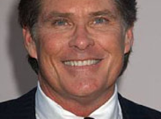 DAVID HASSELHOFF GETS SOLE CUSTODY OF KIDS thumbnail