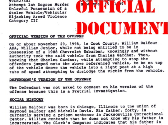 FELONY X: HUDSON MURDERS SUSPECT COURT DOCUMENTS thumbnail