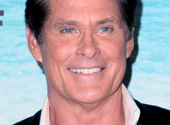 THE HOFF & OTHER 'DANCING' FOOLS ANNOUNCED thumbnail