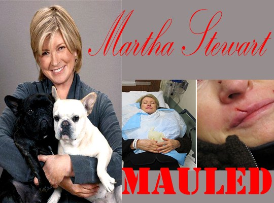 MARTHA MAULED BY DOG thumbnail
