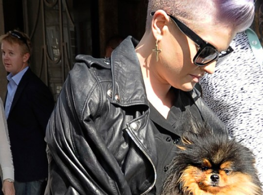 KELLY OSBOURNE AWASH IN A SEA OF LEGAL DOG POOP??? thumbnail