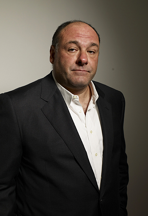 JAMES GANDOLFINI 1961-2013 cardiac arrest