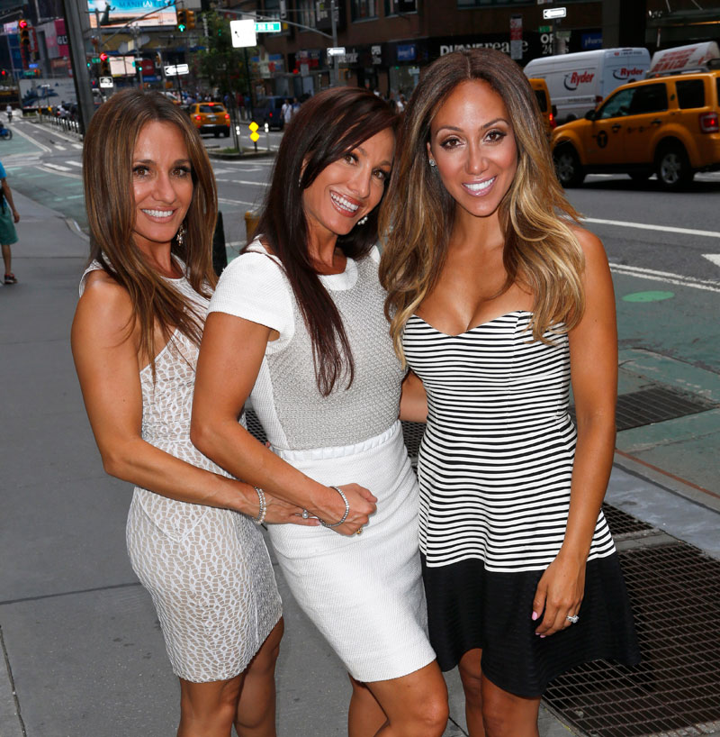 real-housewives-of-new-jersey-season-seven-no-contracts-04
