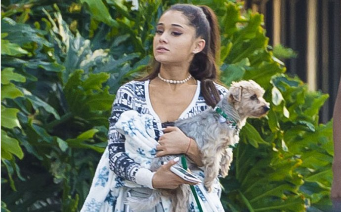 ariana grande diva dog shopping photos