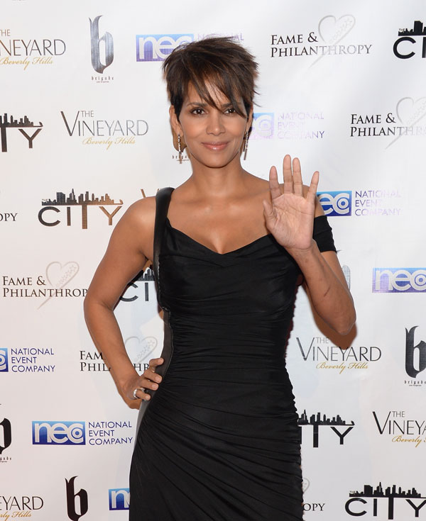 halle-berry-divorce-olivier-martinez-dating-chris-webby-02