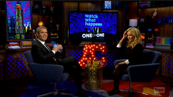kim-richards-drunk-arrest-beverly-hills-hotel-wwhl-07