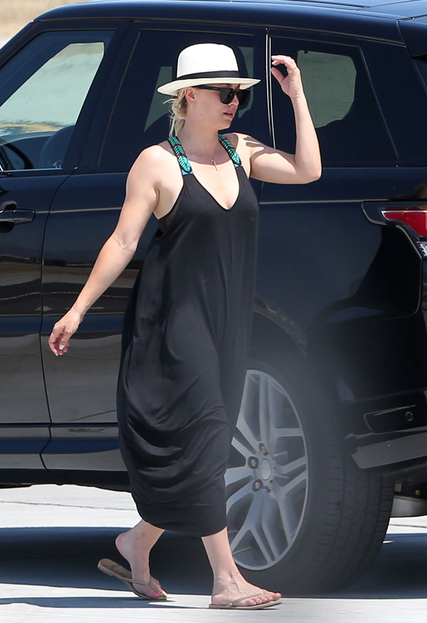 kaley-cuoco-karl-cook-dating-move-in-airplane-pics-02
