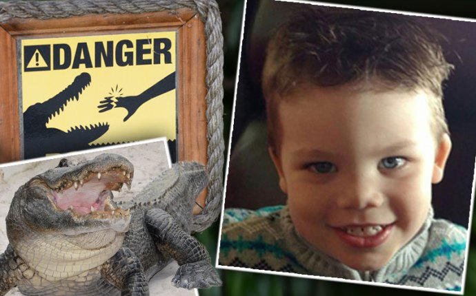 orlando toddler disney world alligator funeral