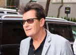 Charlie sheen watched pornos featuring young boys ex wife denise richards claimed