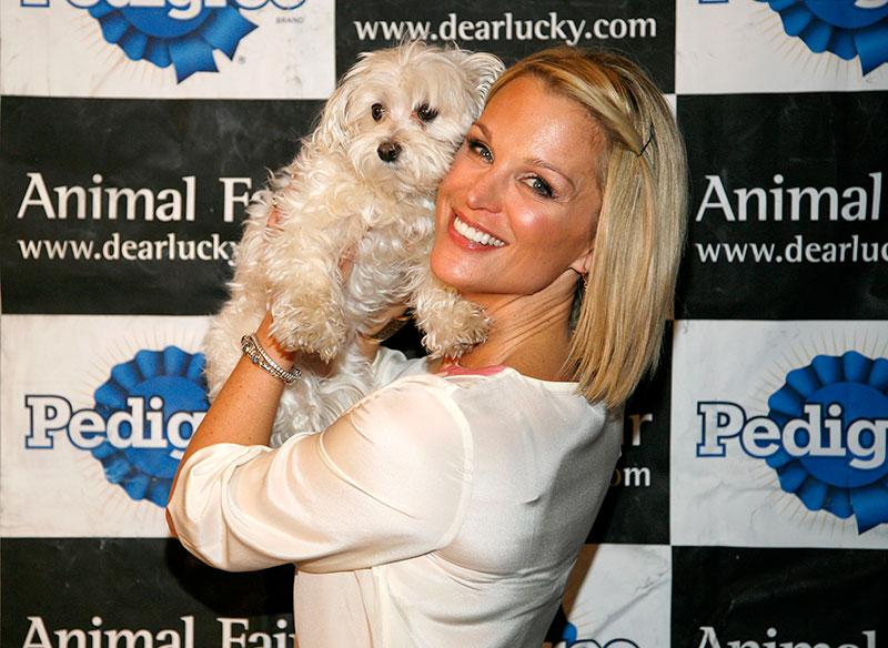 Animal Fair Magazine's 3rd Annual Toys For Dogs Event