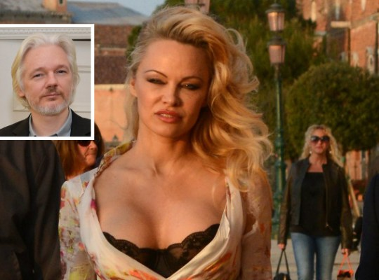 Pamela anderson julian assange dating f