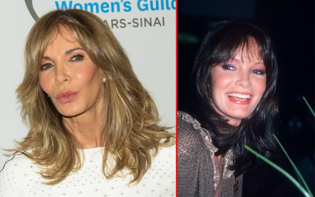 jaclyn smith plastic surgery disaster