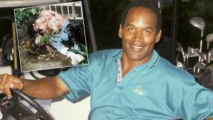 oj simpson murder trial ron goldman lawsuit