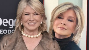 Martha Stewart's New Face Thanks To Surgeon's Knife say Medical Experts.