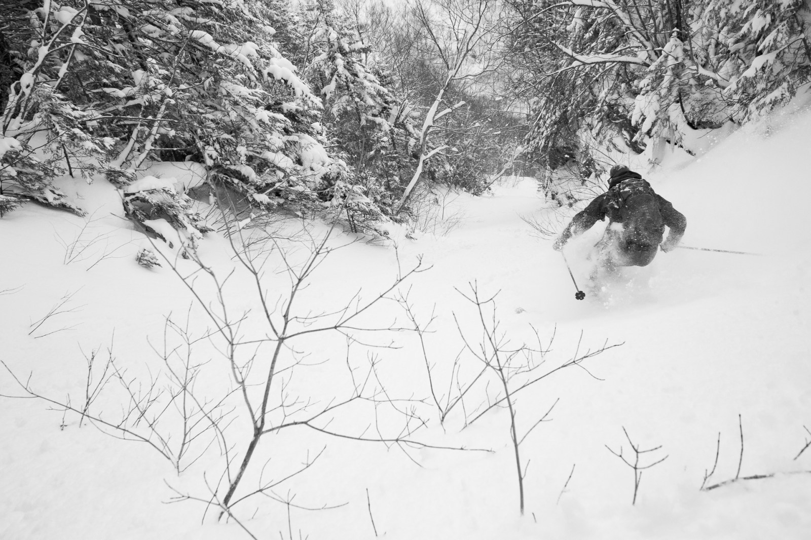 Naked black woman outdoor skiing To Preserve Access Skiers Cutting Illegal Glades Are Going Legit